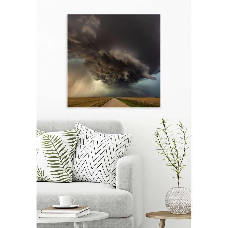 tableau plexi exclusif et recherche sur les oiseaux. Black Bedroom Furniture Sets. Home Design Ideas