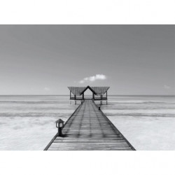 Black and white trompe l'oeil sea painting