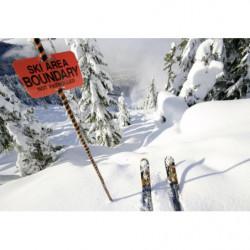 Cuadro en lienzo de esquí fuera de pista