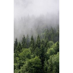 MISTY FOREST Wall hanging