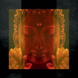 Brise vue suspendu zen buddha