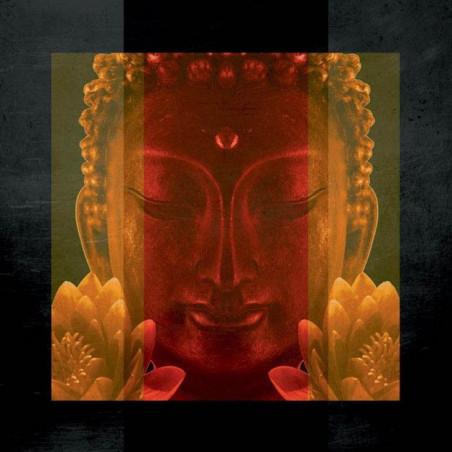 Pantalla de privacidad BUDDHA