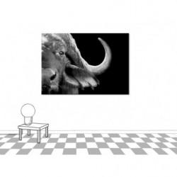 Cuadro en lienzo con diseño de búfalo en blanco y negro