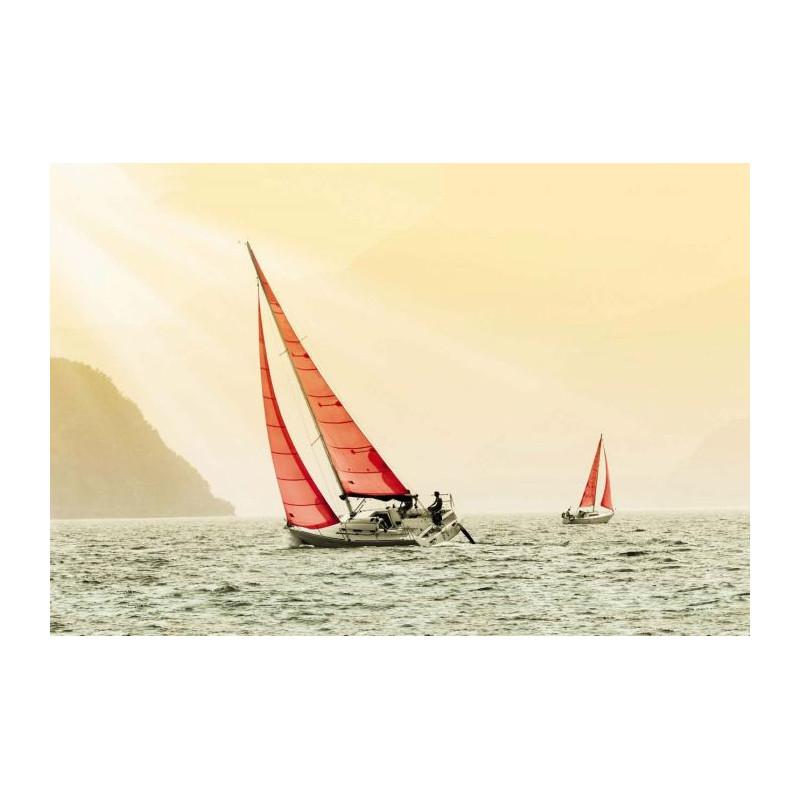 Brise vue paysage corse avec vue sur la mer