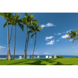 Poster palmiers en bord de mer