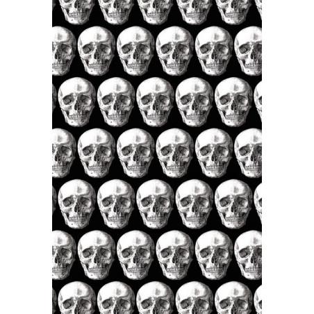 CATACOMBES wallpaper