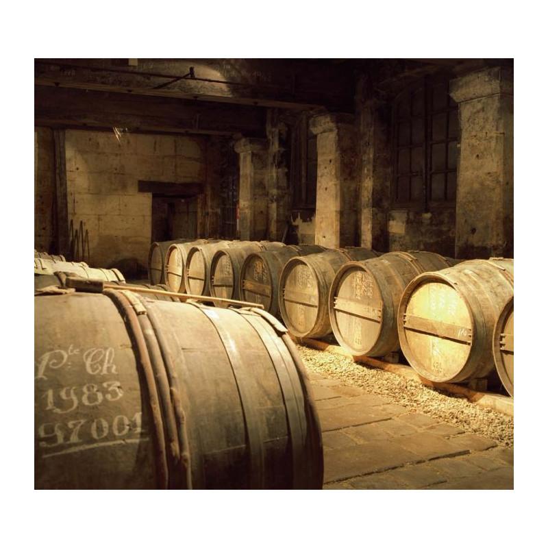 poster panoramique cave cognac photo tonneaux de vins. Black Bedroom Furniture Sets. Home Design Ideas
