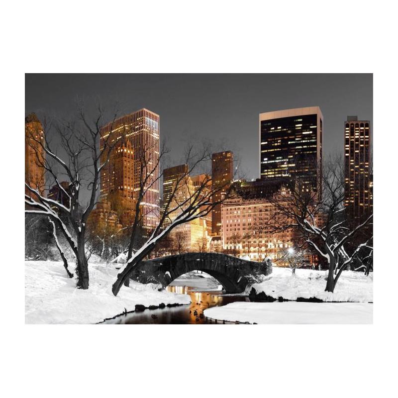 CENTRAL PARK LIGHTS canvas print