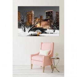Tableau NYC Central park en hiver