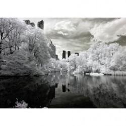 Tableau Central Park sous la neige