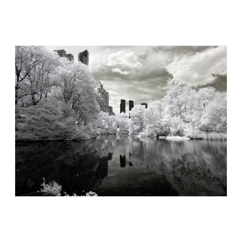 CENTRAL PARK B&W Poster