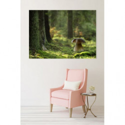 Forest photo canvas print