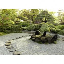 Tableau photo jardin zen