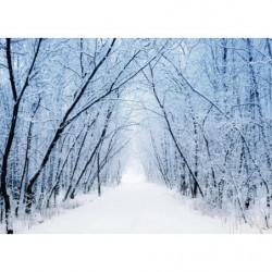Tableau nature sous la neige