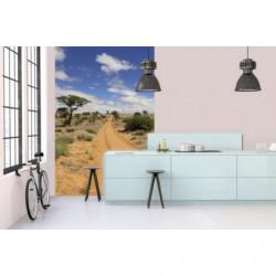 Trompe l'oeil wallpaper path in the desert