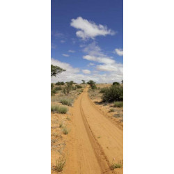Póster para puerta del desierto de arena