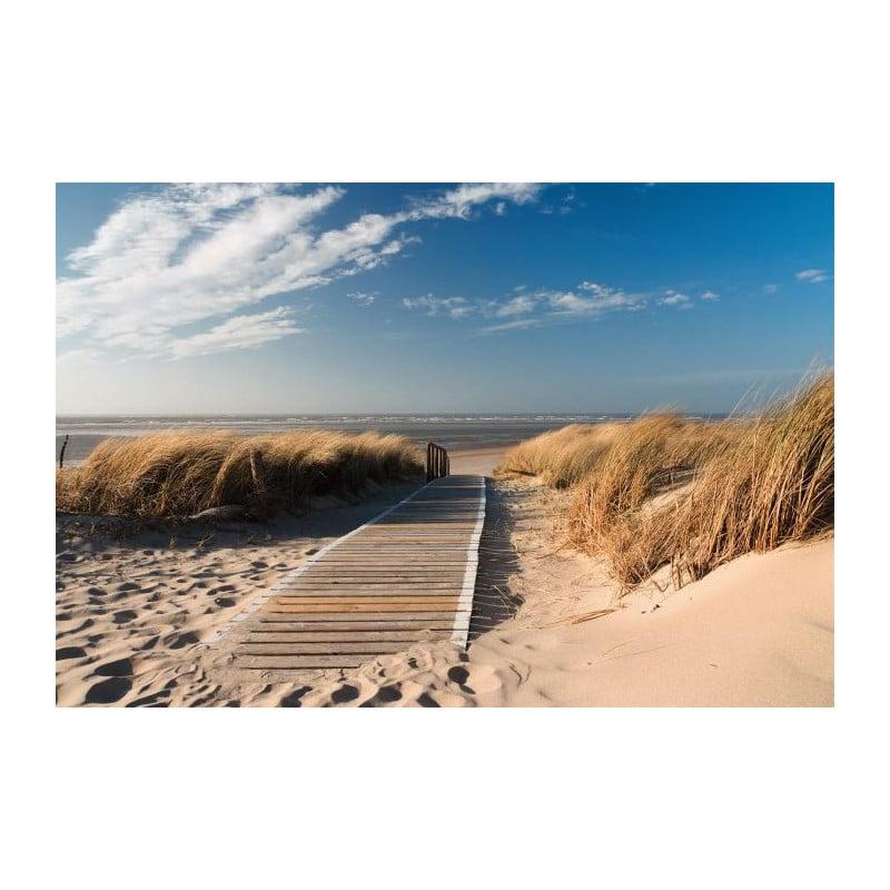 Papier peint panoramique plage grand format chemin des dunes - Fabricant de papier peint en france ...