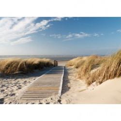 Tableau trompe l'oeil plage des dunes