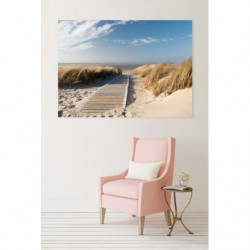 PATH OF THE DUNES  Canvas print