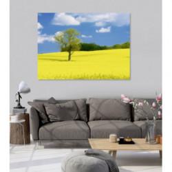 Campo de pintura con flores amarillas