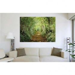 Poster géant trompe l'oeil chemin dans la forêt