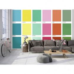 Poster couleurs d'un nuancier Scenolia