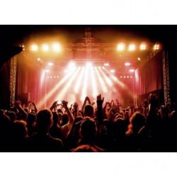 Original picture of a concert