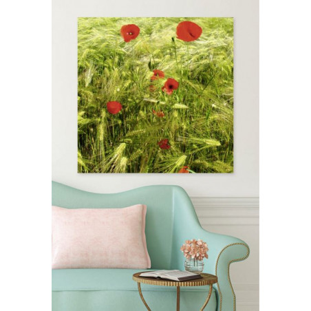 POPPIES AND BLES canvas print