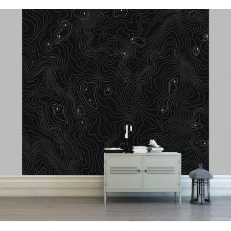 Papier peint COURBES DE NIVEAU