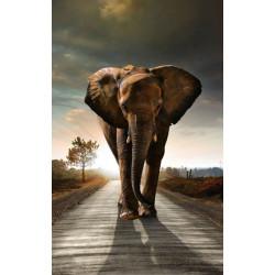Papier peint éléphant pour déco murale animaux