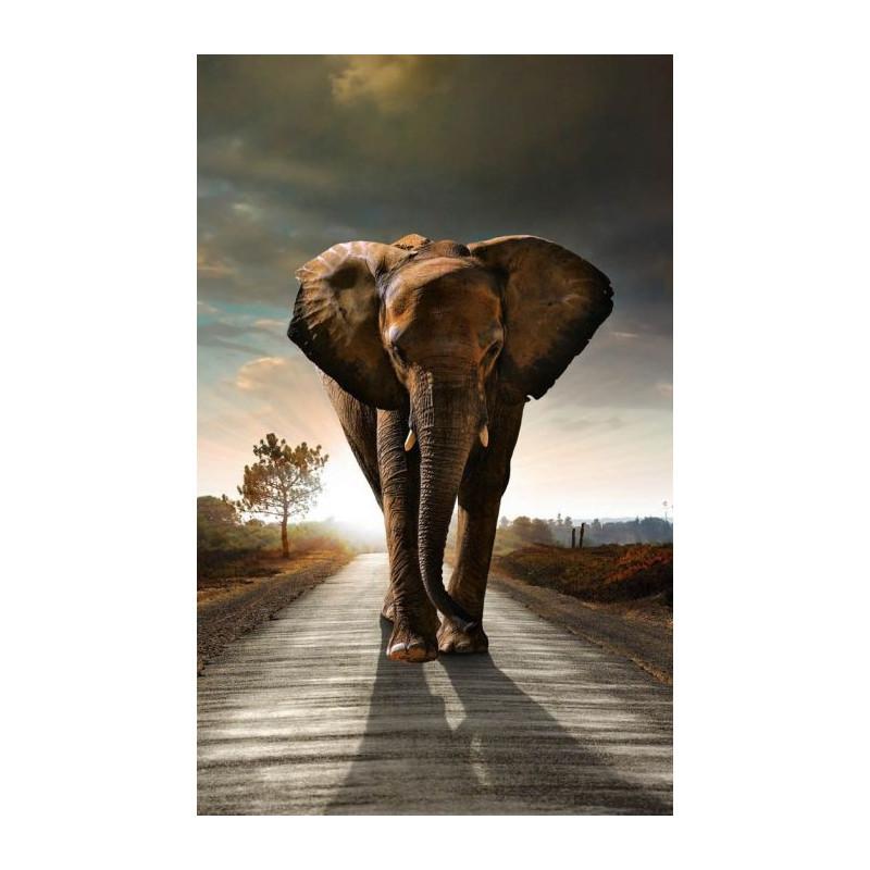 Toile éléphant - Poster mural animal sauvage dAfrique