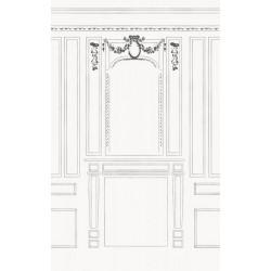 Tenture suspendue style haussmannien : illustration de moulure