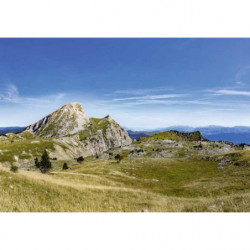 Pintura de paisaje Vercors naturaleza