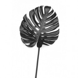 Black and white tropical fern painting