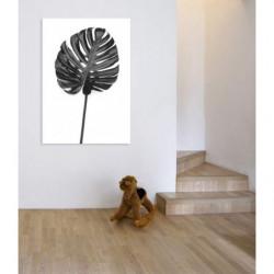 Tableau fougère tropical noir et blanc
