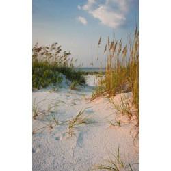 Papier peint paysage dune de sable à la plage