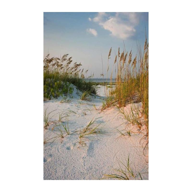 poster de porte mer et dunes de sable d co scenolia. Black Bedroom Furniture Sets. Home Design Ideas