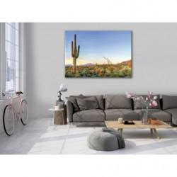 Tableau paysage du désert avec un cactus