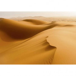 SAHARA DESERT Canvas print