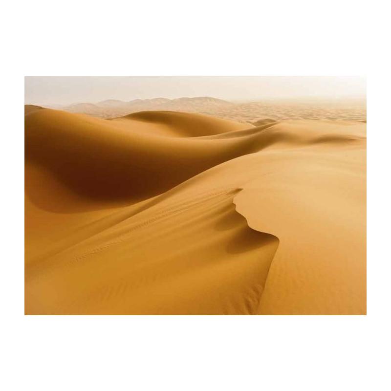 Lienzo impreso DESIERTO DE SAHARA