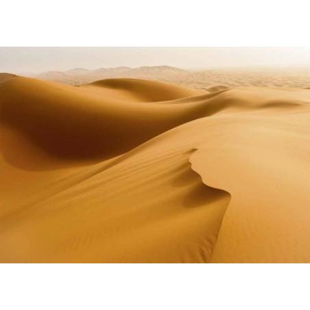 Tableau DÉSERT DU SAHARA
