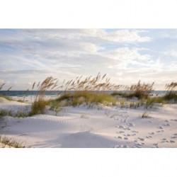 Papier peint panoramique plage à l'océan