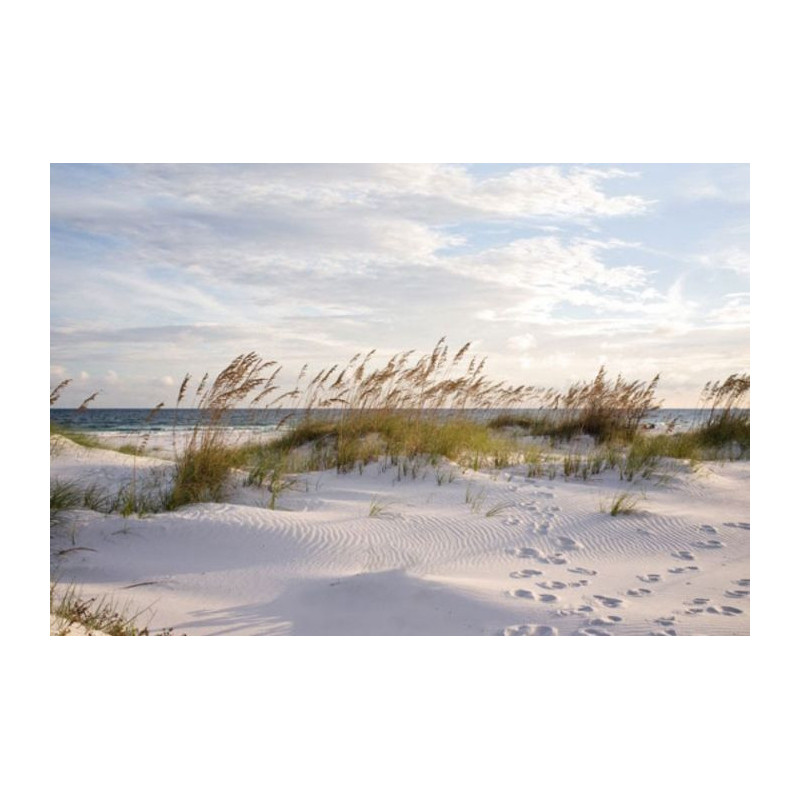 Poster Plage De Sable Direction Oc An D Co Grand Format
