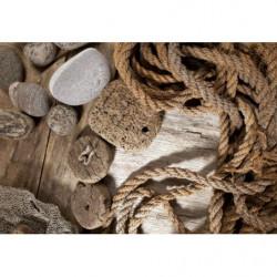 Carta de la cuerda del marinero