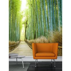 Poster panoramique bambous zen