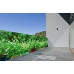 Brise vue herbes aromatiques sur le rebord de la fenêtre
