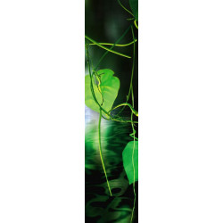 Papier peint nature feuille verte