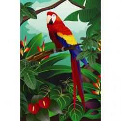 Papier peint illustration perroquet coloré
