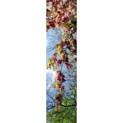 Tenture murale extérieure branche d'un arbre en fleur