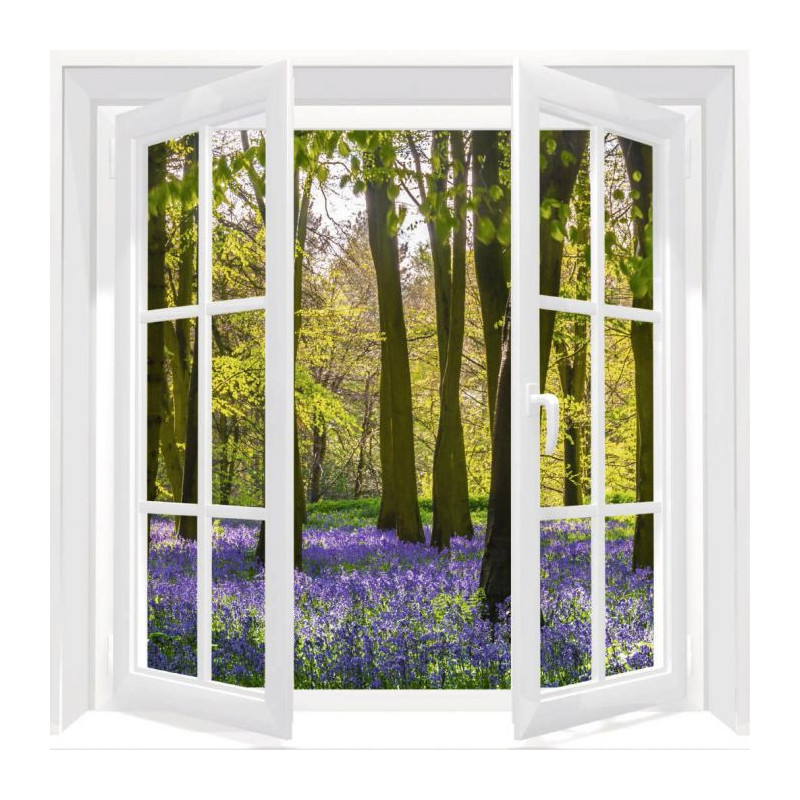 WINDOW ON THE HYACINTH FOREST Canvas print